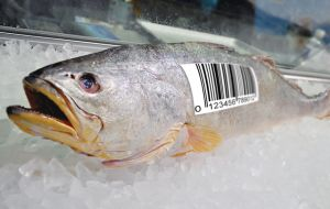 Food chain traceability is increasingly a requirement in major fish markets