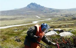 Experts helping to clear some of the minefields close to Stanley, planted by the Argentines