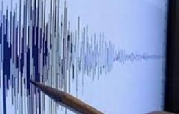 The country's Geophysics Institute said the quake occurred at a depth of five kilometers and was followed by a forceful aftershock.