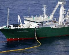"""Ci sarà un rilassamento delle condizioni di sbarco cattura obbligatoria nei porti marocchini """", che permetteranno un migliore funzionamento della flotta"""""""