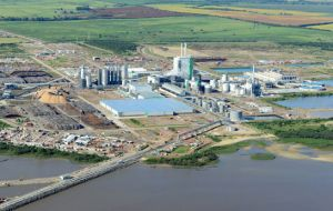 Montes del Plata is forecasted to produce 1.3 million tons annually plus generate sufficient electricity out of biomass to run the plant