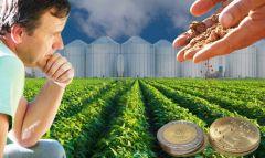 Abbiamo coltivatori di soia che hanno perso fortune per essere stupido e non vendere i fagioli in tempo come sono stati raccomandati, e ora vogliono una svalutazione.