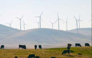 A common sight in top hills of Uruguay, a display of wind turbines
