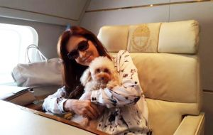 Cristina Fernandez presented her toy-caniche Lolita and announced that small pets (cats and dogs) will be allowed to travel with their families in Aerolineas