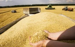 Cereals prices during 2014 dropped 12.5% from the previous year, buoyed  by forecasts of record production and ample inventories.