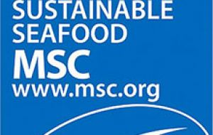 MSC certified fisheries now catch 8.8 million tons of MSC certified seafood per year, accounting for close to 10% of the total global wild-capture