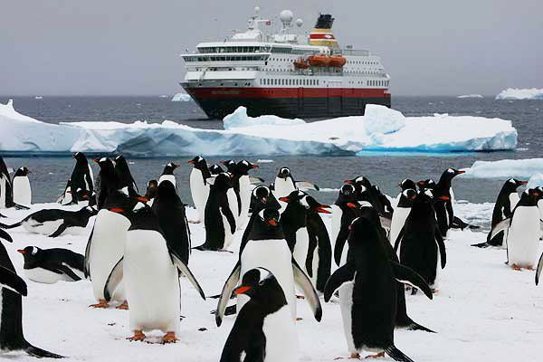 Number Of Tourists Visiting Antarctica Was Down According To - Traveling to antarctica