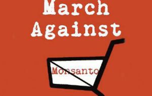 "Activists are also organizing a global ""March Against Monsanto"" for May 23 with events planned in roughly 400 cities throughout the world."