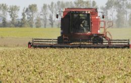 """So far the average yield stands at 3.300 kilos per hectare, we can thus estimate the current total harvest at 57.4 million tons"", said the Cereals chamber."