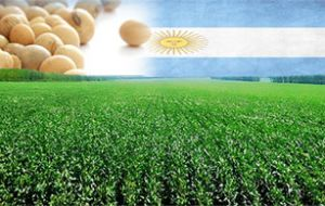A record soy harvest in Argentina was noted, which helped to overcome the decline in price of commodities through the second half of 2014 and this year.