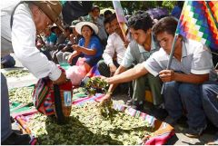 Coca leaves are part of Bolivia