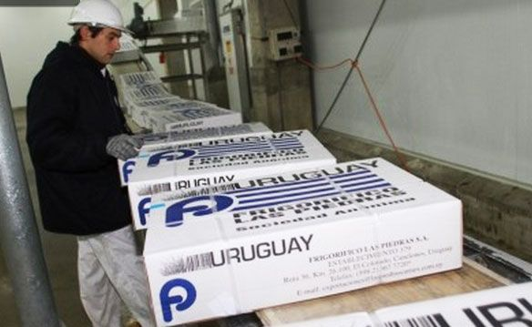 China becomes main importer of Uruguayan and Argentine frozen beef