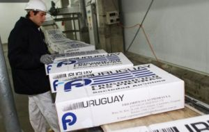 Uruguay which has a more aggressive production and sales policies shipped almost 50.000 tons of beef in the first four months of the year