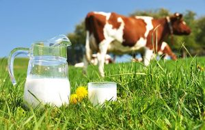 The dairy price index dropped 7.2% from June mainly due to lower demand from China, the Middle East and North Africa and a glut of milk in the US
