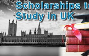 Chevening/ANII scholarships will be awarded to study a Master's degree in the United Kingdom in any area, although there are priorities