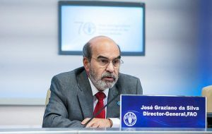 """Forests play a fundamental role in combating rural poverty, ensuring food security and providing people with livelihoods"" said José Graziano da Silva"