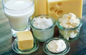 A substantial drop in prices for milk powders, cheese and butter pushed the August dairy price index down by 9.1% to 135.5 points