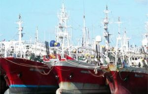 The jigger fleet of 65 vessels landed 117,038 tons of squid, 93.7% of the total. Most catches (98,048.7 tons) came from the area located south of latitude 44°.