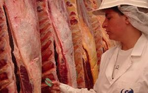 In 2000 Argentina had shipped 26.000 tons of fresh and frozen beef to Canada.