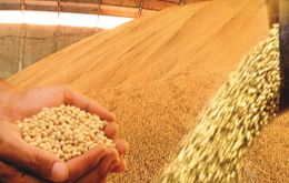 Brazil exported 54.3 million tons of soybeans; 28.9 million tons of corn; 11.9 million tons of cellulose and the 2 million tons of coffee beans last year