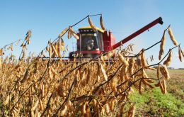 March is the main month for harvesting. Soybeans are booming in Brazil, with this year's crop expected to be 15% larger than two years ago.