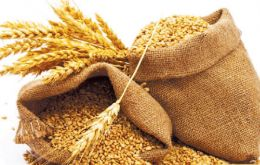FAO issued its first forecast for world's 2016 wheat harvest, projecting 723 million tons of total production, about 10 million tons below last year's record output.