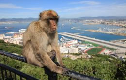Gibraltar is featured in Episode 3 of the series to be shown on BBC4 on Tuesday 26th April at 9pm and repeated on Wednesday 27th April at 8pm (Gibraltar time).