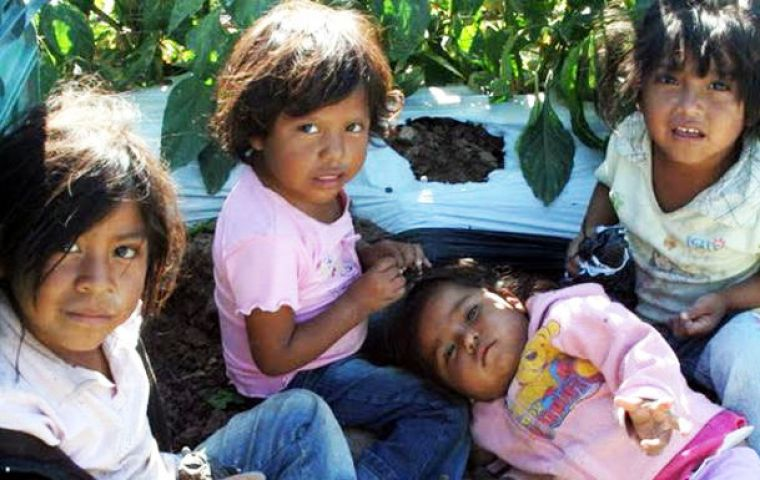 Argentine children poverty environment: most are born to families with four to five children, minimum education parents and who mostly work in the black economy.