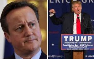 "Cameron said that Trump's suggestion Muslims should be barred from the United States was ""divisive, stupid and wrong."""