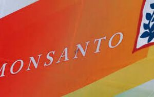 Dispute blew up after Monsanto started asking Argentine exporters to inspect soybean shipments to ensure growers had paid royalties for using company's seeds