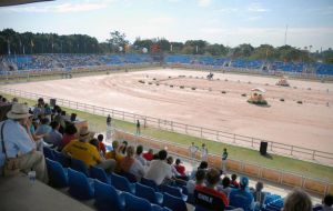 Among those euthanized were two horses that had been housed at western Rio's Deodoro Military Complex, where the Olympic equestrian events will be held.