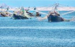 Conapesca plans to sell its shrimp fishing freezer fleet plus two processing plants in Puerto Madryn and Rawson, reports Revista Puerto.