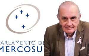 "Alberto Asseff, member of Parlasur (Mercosur parliament) for the Renewal Front described the statement as a ""bad pre-accord"" and ""unnecessary""."