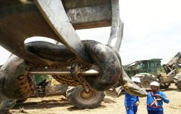 A footage showing how the workers lifted the anaconda from the rubbles with a crane has been circulating online.