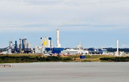 Controversial pulp mill not as polluted as Argentine side of the river