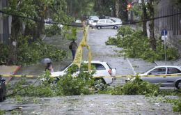 Fallen trees, flooded roads, power lines down, in different districts of Montevideo
