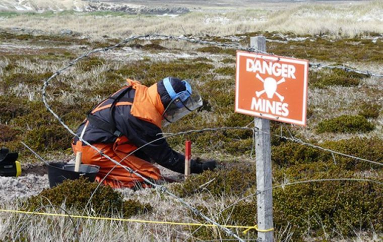 Special crews working in the clearance of minefields in the Falklands. Since 2009 some 30 areas have been cleared