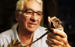 Goldsmith Juan Carlos Pallarols at his workshop creating metal roses from bullets, pistols and even parts of airplanes from the Falkland Islands war (Pic WGKA)