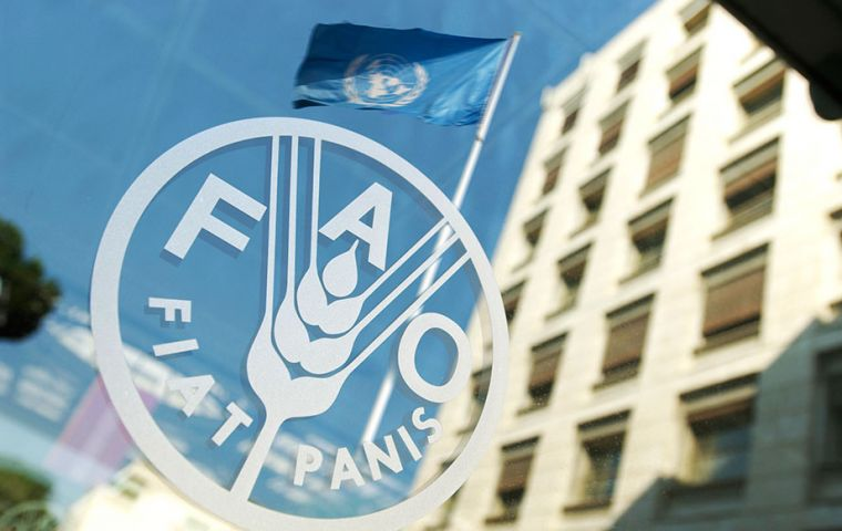 The FAO Cereal Price Index rose 3.4% from December to a six-month high, with wheat, maize and rice values all increasing.