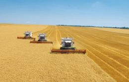 Argentine farmers likely planted 5.19 million hectares with wheat this year, the Agriculture Ministry said. Argentine wheat is harvested in December and January.