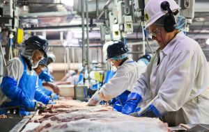 More than 30 companies are accused of unhygienic practices. Among them are JBS, the world's largest beef exporter, and BRF, the world's top poultry producer.