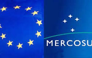 "The EU and Mercosur bloc are set to press on with negotiations on a massive trade deal and ""this situation really complicates negotiations""."