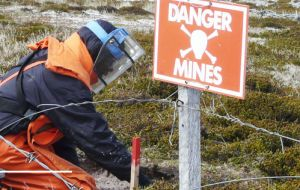 Experts clearing in minefields in the Falklands, a legacy from the 1982 war when the Argentine military invasion