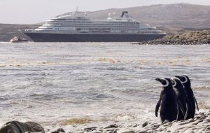 Each time a cruise ship docks, hundreds of passengers come ashore to see wildlife. If Yorke Bay is reopened, it's easy-to-reach location; it could make it a magnet for tourist traffic (Pic GETTY IMAGI