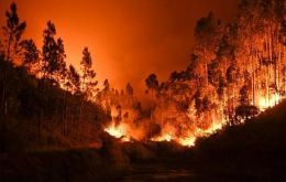 Over 140 forest fires continued to hit Portugal by Monday morning.