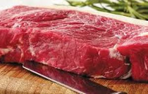 The Meat Price Index  averaged 175.2 points in June, up 3.2 points (1.8%) from May, marking the sixth consecutive month of moderate price increases.