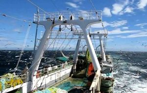 During the first calamari season, the fleet harvested around 40,000 tons, and two weeks of the second season brought onboard another 10,000 tons of squid.