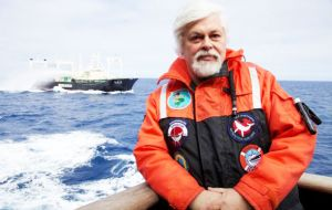 "Sea Shepherd founder Captain Paul Watson accused nations including Australia, New Zealand and the US of being ""in league"" with Japan."