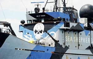 Mr. Watson said the Sea Shepherd was largely responsible for reducing Japan's annual whaling quota from 1,035 in 2005 to 333 at present.