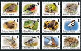 2017 Small Birds Definitive